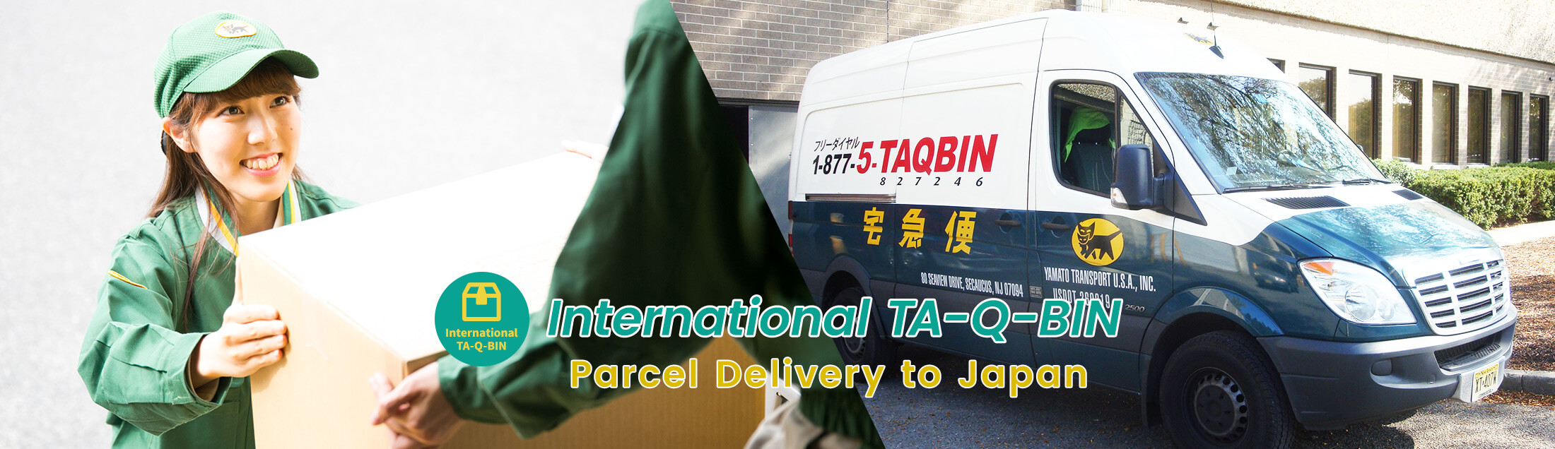 International TA-Q-BIN